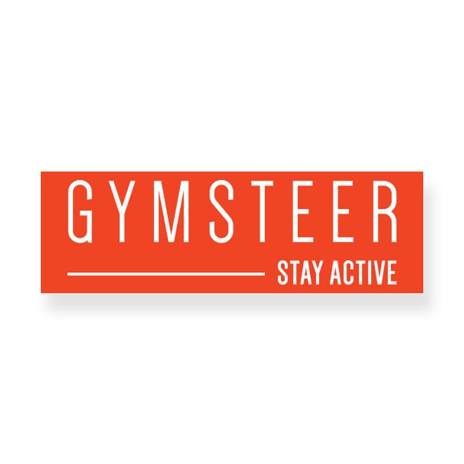 gymsteer2